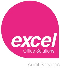 Excel Audit Logo